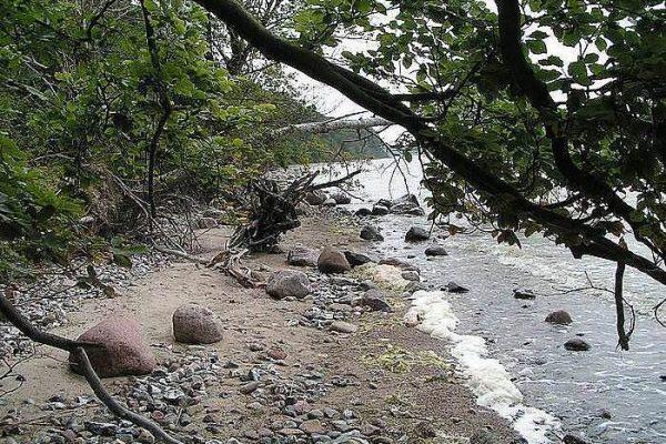 Urlaub am Strand auf der Insel Rügen – Angebote für den Aktivurlaub an der Ostsee im Centralhotel Binz